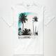 BILLABONG Vista Mens T-Shirt