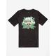 NIKE SB Raccoon Fern Icon Boys T-Shirt