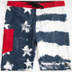 TAVIK Independence Mens Boardshorts