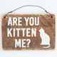 Are You Kitten Me Wood Sign