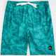 IMPERIAL MOTION Marbs Mens Volley Boardshorts
