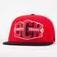 DGK Ghetto Champs Starter Mens Snapback Hat