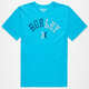 HURLEY Arched Mens T-Shirt