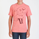 VOLCOM Ash FA Boys T-Shirt