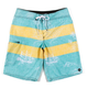 RUSTY Molokai Mens Boardshorts