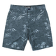 RUSTY Molokai Walkshort Mens Shorts