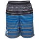HURLEY Ragland Mens Mesh Shorts