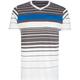 DISTORTION Element Stripe Mens T-Shirt