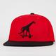 LRG Higher Boys Snapback Hat