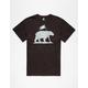 ELEMENT Bear Flag Mens T-Shirt