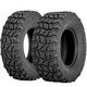 Sedona Coyote Tire