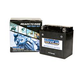 Western Power Sports Sealed Maintenance Free Battery (YTX9-BS)