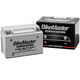BikeMaster AGM Platinum II Battery (MS12-20L-BS BM)