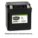 BikeMaster Lithium Ion Battery DLFP-9-BS