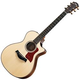 Taylor 712CE Indian RW GC Acoustic Electric Guitar