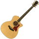 Taylor 614CE Maple GA Acoustic Electric Guitar