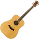 Taylor DN4 Ovangkol/Sitka Acoustic Guitar