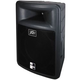 Peavey PR-15D Powered Loud Speaker 15 Inch 2-Way +