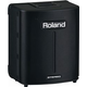 Roland BA-330 Stereo Battery or AC PA System
