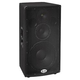 B52 SL-315 15In/400W @ 8 Ohms 3-Way Speaker  *   *