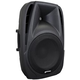 Gemini ES08P 8-Inch Powered PA Speaker