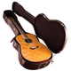 Gator 12 String Dreadnought Wood Guitar Case