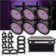 Chauvet SlimPAR 56 LED 6-Pack with ATA Road Case