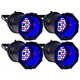 Solena Max Can 144 Quad 36x4-Watt RGBW LED 4 Pack