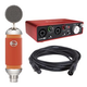 Focusrite Scarlett 2i2 Audio Interface with Blue Spark Condenser Mic
