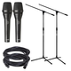 AKG P5i Dynamic Vocal Mic Pair with Stands & Cables