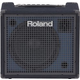 Roland KC-200 100-Watt Keyboard Amplifier