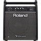 Roland PM-100 10-Inch 80W Personal Drum Monitor