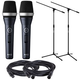 AKG D5CS Vocal Mic with Switch Pair with Stands and Cables