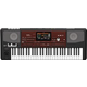 Korg Pa700 ORIENTAL 61-Key Professional Arranger Keyboard