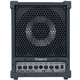 Roland CM30 Cube 30-Watt Personal Stage Monitor