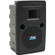 Anchor Audio Liberty 2 PA Speaker with Dual Mic Receiver