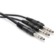 Y-Cable 1/4 (M) to Dual 1/4 (M) Stereo 5 Ft