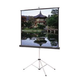 Dalite Picture King 70X70 Tripod Screen          *
