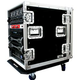 Road Ready RR14UAD Delux 14 Space Amp Rack       *