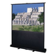 Da-Lite 60-Inch Projection Pull Up Screen