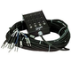 Rapco 100FT 8 Channel Snake W/4 39086 Sends