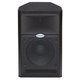 Samson Live 612 12In 2-Way Powered Speaker 300W  +