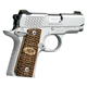 Kimber Micro Raptor Stainless .380 ACP 2.75-inch 6Rd Night Sights