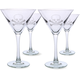 Skull & Crossbones Martini Glasses - 10 oz - Set of 4