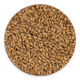 Briess Malting Aromatic Malt