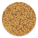 Briess Malting Special Roast Malt