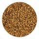 Briess Malting Extra Special Malt - 1 Pound Bag