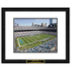 Carolina Panthers NFL Framed Double Matted Stadium Print
