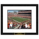 Cincinnati Bengals NFL Framed Double Matted Stadium Print