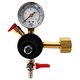Economy Single Gauge CO2 Regulator